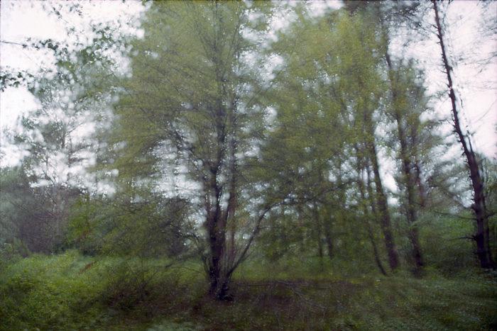 mantle analog photography
